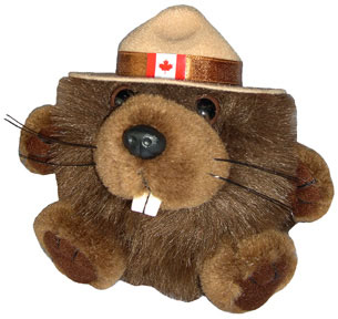 Canada RCMP Beaver wearing a mountie hat